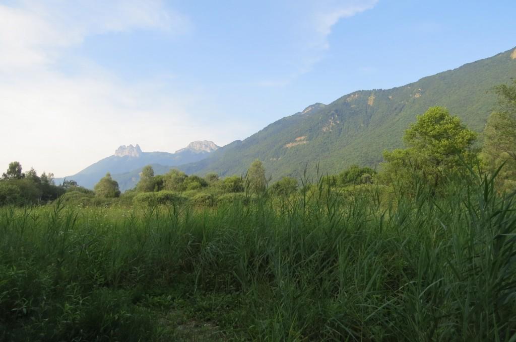 Réserve naturelle du bout du lac d'Annecy.