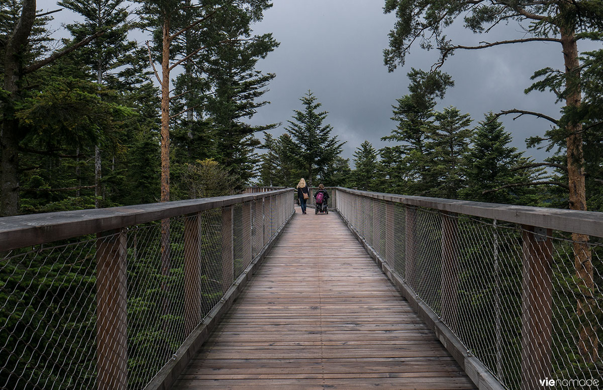 Le sentier de Baumpwipfelpfad. ©corinne Vie Nomade