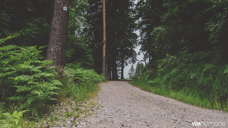 Une randonnée accessible au Ruhestein.